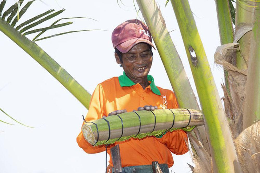 Mát xa hoa dừa, người phụ nữ Trà Vinh thu nửa tỷ mỗi tháng