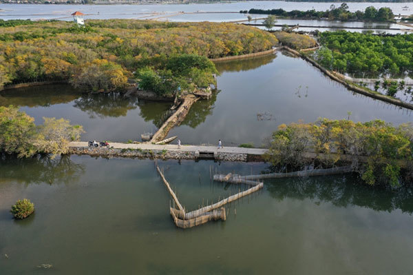 Vietnam promotes conservation and protection of wetlands