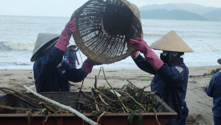 Sau 3 ngày mưa lũ, nhiều cây gỗ lớn dạt bờ biển Nha Trang