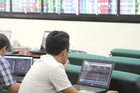 Vietnam's stock market draws foreign capital from new funds
