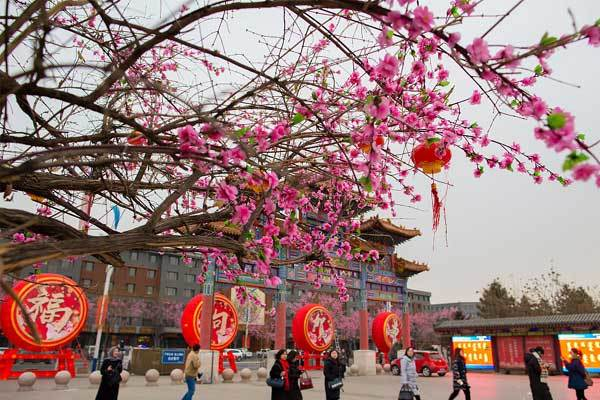 Không khí Tết ngập tràn ở Trung Quốc
