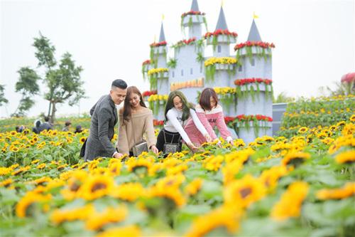 Mê hoặc Lễ hội Kỳ quan muôn sắc hoa