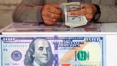 Tỷ giá ngoại tệ ngày 3/2: USD tăng giá, Euro giảm