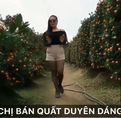 Chị bán quất Tết chất nhất miền Bắc: 1 phút quảng cáo khiến dân mạng đặt mua ầm ầm