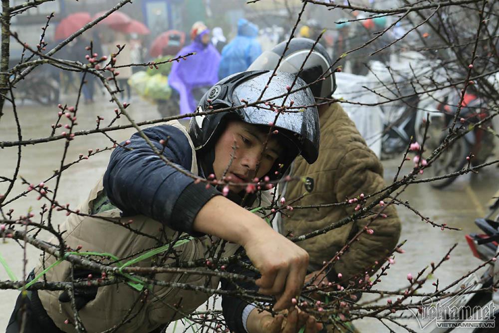 Xuýt xoa chợ đào rừng trong giá rét ở Sa Pa