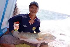 Cà Mau: Xôn xao ngư dân bắt được cá 6 kg nghi sủ vàng tiền tỷ