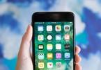 Apple sửa miễn phí iPhone 7 bị lỗi mạng