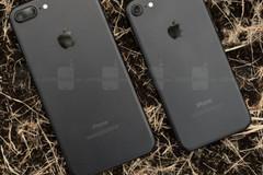 Apple bán iPhone 7 tân trang chỉ rẻ hơn hàng mới 50 USD