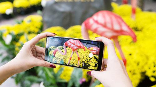 Lưu trọn khung hình ngày Tết bằng Galaxy A8/A8+