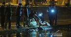 12 con thiên nga ở hồ Gươm bị bắt lại trong đêm