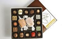Vụ buôn bán 'kinh hoàng': Khốn đốn với socola Valentine