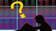 'Thiên nga đen' xuất hiện: Hai ngày hoảng loạn, mất 12 tỷ USD