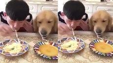 """Cuộc thi ẩm thực """"cute"""" nhất thế giới"""