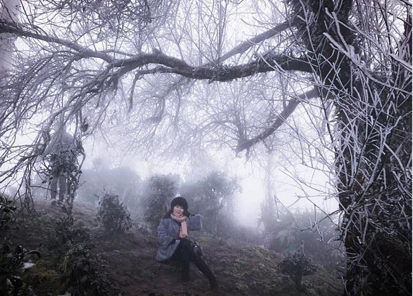 băng tuyết,thời tiết,Tà Xùa,Sơn La