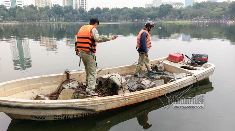 Thiên nga,Hà Nội,hồ Thiền Quang
