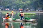 Quây lưới 'nhốt' thiên nga giữa hồ tránh bị chọc ghẹo