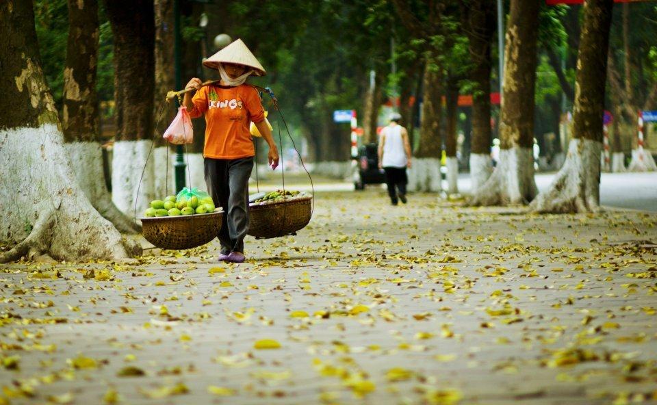 văn hóa đọc,bán hàng rong,Hà Nội,Bán sách,Sốc văn hóa