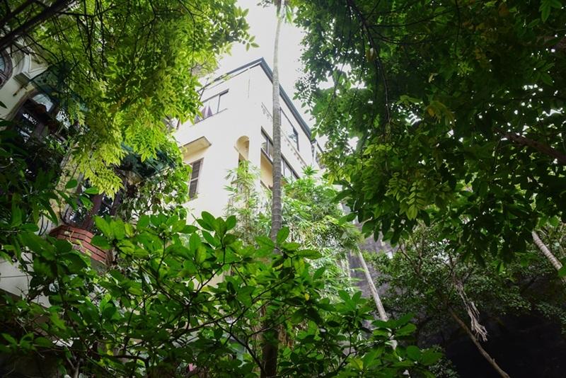 Biệt thự gần 600m2 giữa phố cổ của nhà buôn vàng xưa