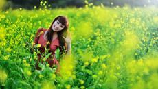 Top 10 bài hát cứ vang lên là thấy Xuân về
