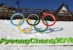 Thế vận hội Mùa đông 2018 bị tấn công mạng