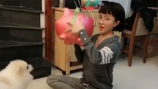 Màn đập lợn của cô gái trẻ khiến nhiều người mơ ước