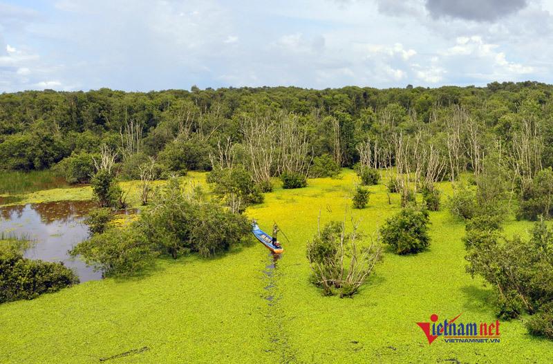 săn chim,vườn quốc gia Tam Nông,du lịch sinh thái