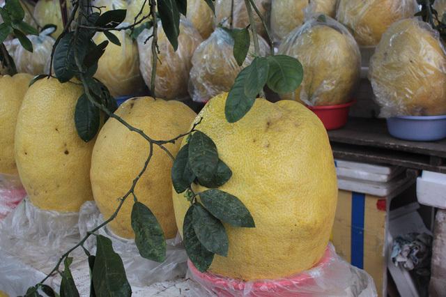 Độc đáo bưởi 'khổng lồ' 10kg, giá bạc triệu một quả ở Hà Nội
