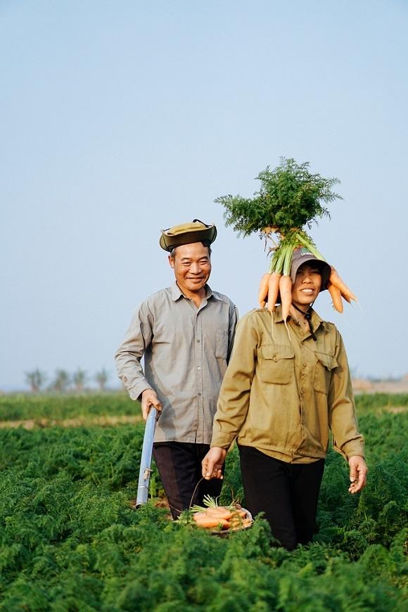 Bộ ảnh trên cánh đồng cà rốt của cặp vợ chồng nông dân gây sốt ngày 14/2