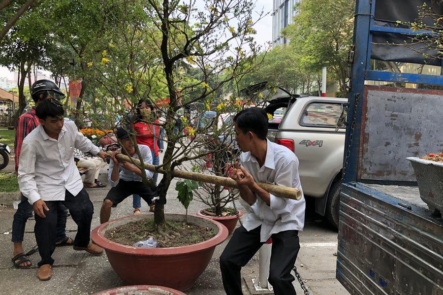 chợ hoa,Tết nguyên đán,Tết mậu tuất,Tết Việt 2018