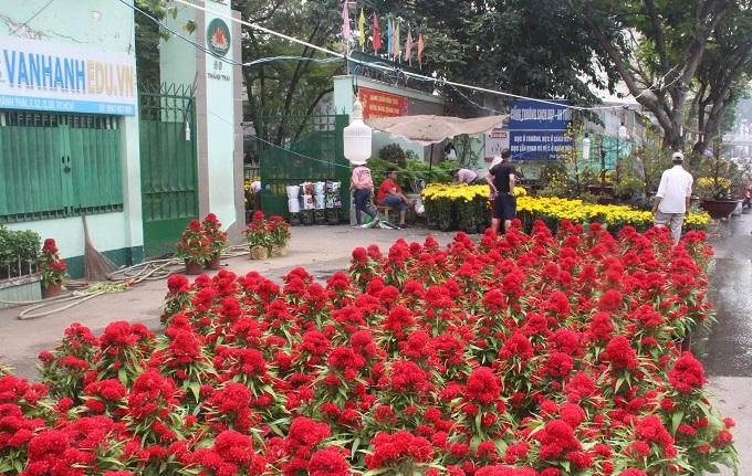 Chợ 30 Tết; Hiu hắt khách mua, chủ hàng đổ hoa xuống sông - ảnh 5