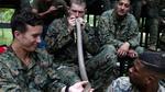 Lính Mỹ uống máu rắn, tập sinh tồn ở Thái Lan