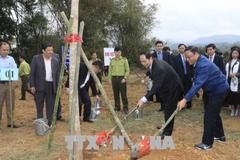 Chủ tịch nước phát động Tết trồng cây Xuân Mậu Tuất