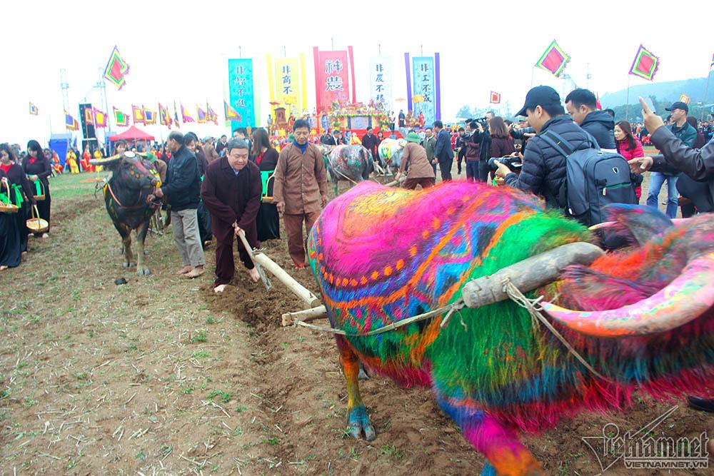 tịch điền,lễ hội tịch điền,Hà Nam