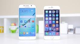 Sản lượng smartphone toàn cầu sụt giảm nghiêm trọng