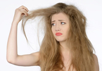 Tuyệt chiêu chăm sóc phục hồi tóc chẻ ngọn hiệu quả