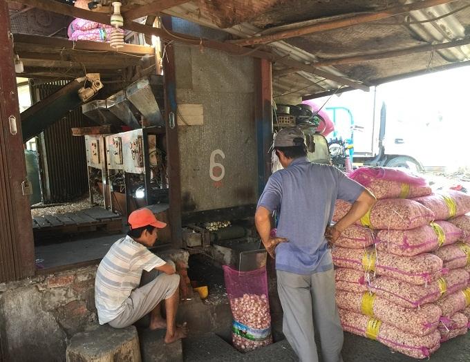 Sài Gòn: Rát tay, cay mắt bóc hành tỏi, nhận 2 nghìn đồng/kg