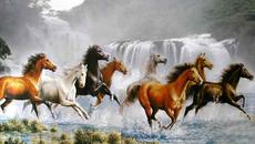 Tranh Rồng, Hổ, Ngựa và điều cấm kỵ khi treo tranh phong thủy