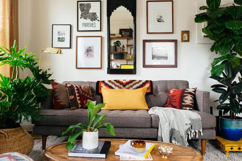 Cách lựa chọn cây cảnh bài trí phòng khách để sinh tài lộc