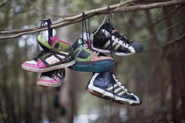 'Khu rừng giày' bí ẩn ở Canada