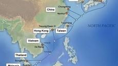 Internet từ Việt Nam đi quốc tế bị ảnh hưởng do APG gặp sự cố