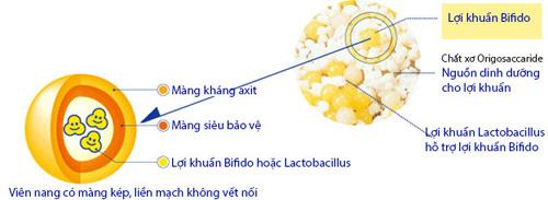 Rối loạn tiêu hóa,táo bón,men vi sinh nhật bản,men vi sinh Nhật Bản Bifina,men vi sinh Bifina
