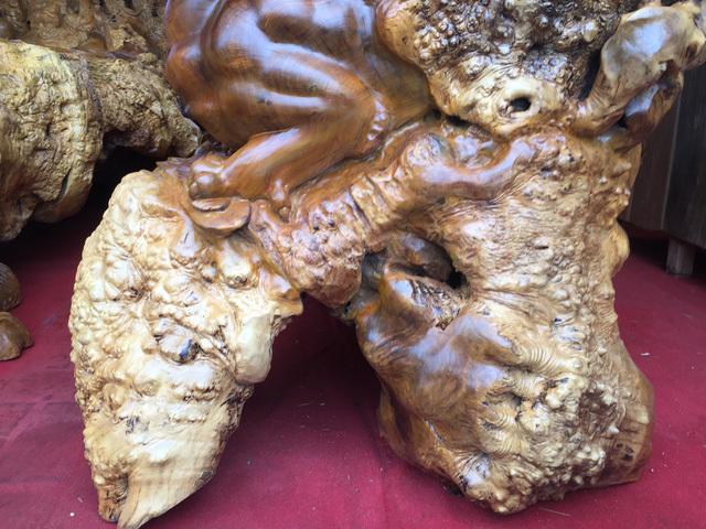 Bộ kỳ mộc 'Tứ linh quần tụ' nu nghiến nghìn năm tuổi hơn 3 tỷ