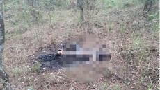 Phát hiện thi thể phụ nữ chết cháy trên đèo Prenn