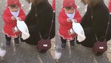 Cô bé túm cổ chim bồ câu để giành thức ăn