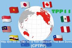 8/3 ký kết CPTPP: Việt Nam, áp lực và cơ hội mới