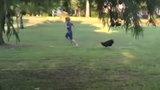 Những em bé dành cả tuổi thanh xuân để sợ gà