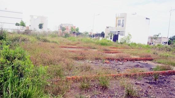 Đất nền,quy định tách thửa,cơn sốt đất nền,mua bán đất nền Tp.HCM