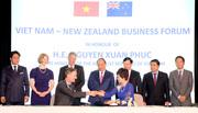 Thủ tướng tiếp lãnh đạo một số tập đoàn lớn của New Zealand