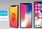 Người hâm mộ không còn mong chờ chiếc iPhone tiếp theo