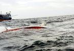Tàu vận tải đâm chìm tàu cá trong đêm